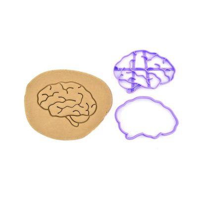 Emporte pièce cerveau